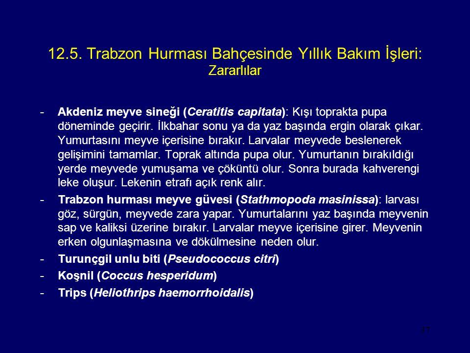 12.5. Trabzon Hurması Bahçesinde Yıllık Bakım İşleri: Zararlılar