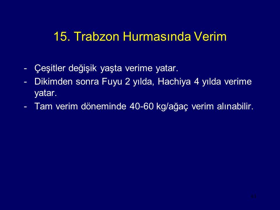 15. Trabzon Hurmasında Verim