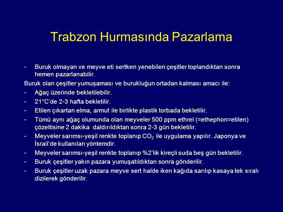 Trabzon Hurmasında Pazarlama