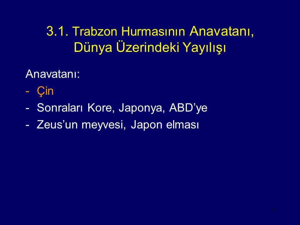 3.1. Trabzon Hurmasının Anavatanı, Dünya Üzerindeki Yayılışı