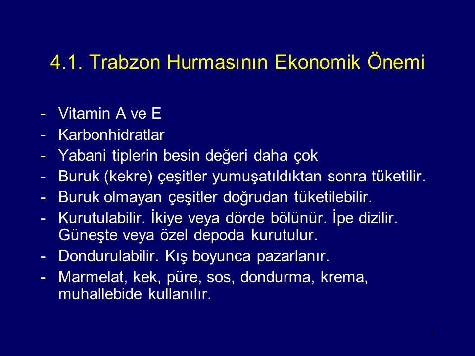 4.1. Trabzon Hurmasının Ekonomik Önemi