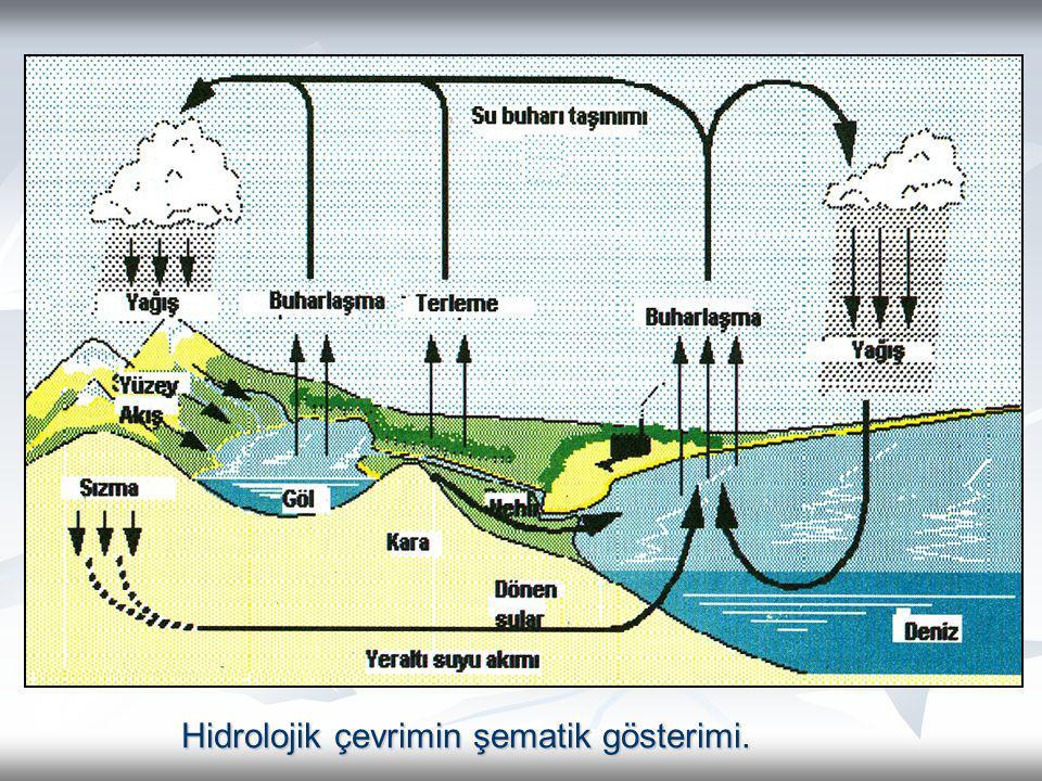 Hidrolojik çevrimin şematik gösterimi.