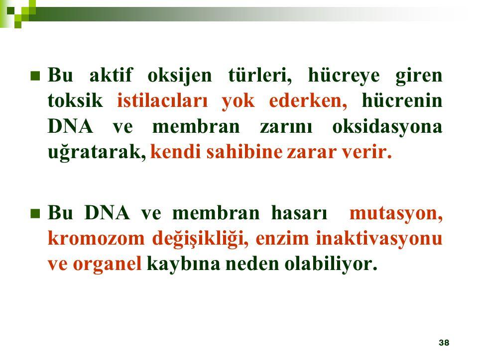 Bu aktif oksijen türleri, hücreye giren toksik istilacıları yok ederken, hücrenin DNA ve membran zarını oksidasyona uğratarak, kendi sahibine zarar verir.