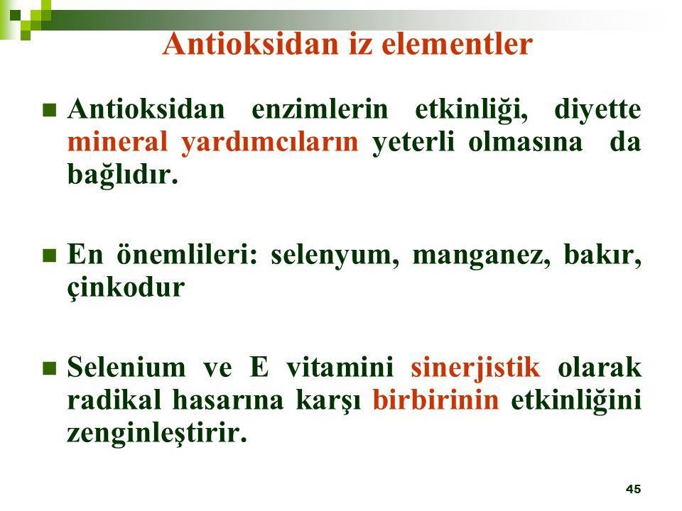 Antioksidan iz elementler