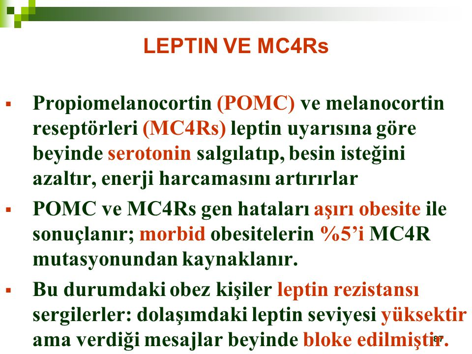 LEPTIN VE MC4Rs