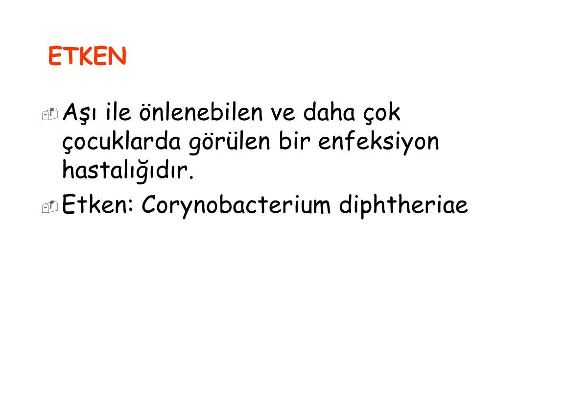 Etken: Corynobacterium diphtheriae