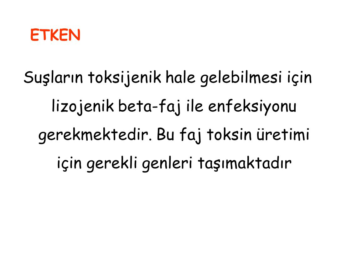 ETKEN