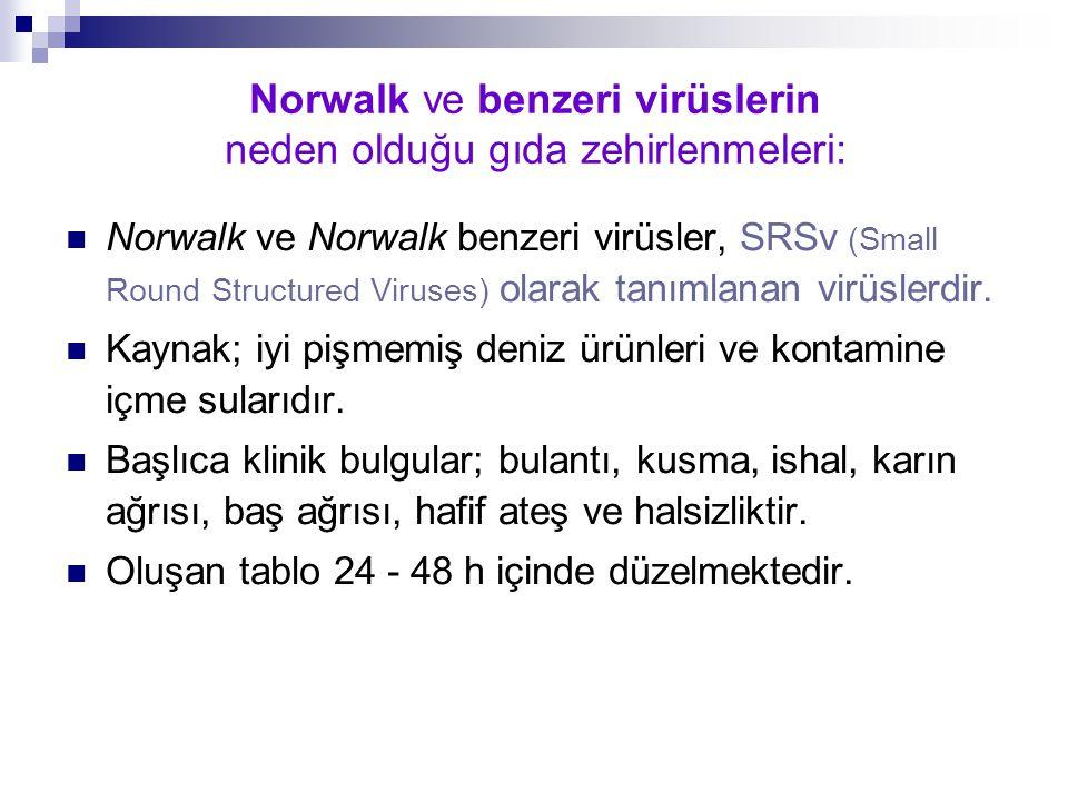 Norwalk ve benzeri virüslerin neden olduğu gıda zehirlenmeleri: