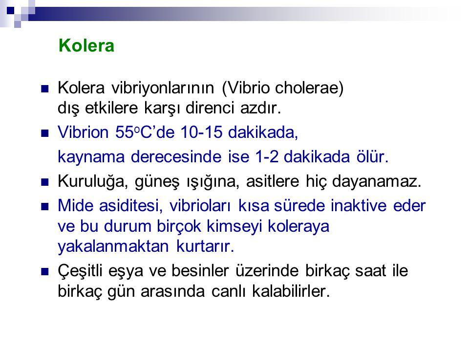 Kolera Kolera vibriyonlarının (Vibrio cholerae) dış etkilere karşı direnci azdır. Vibrion 55oC'de 10-15 dakikada,