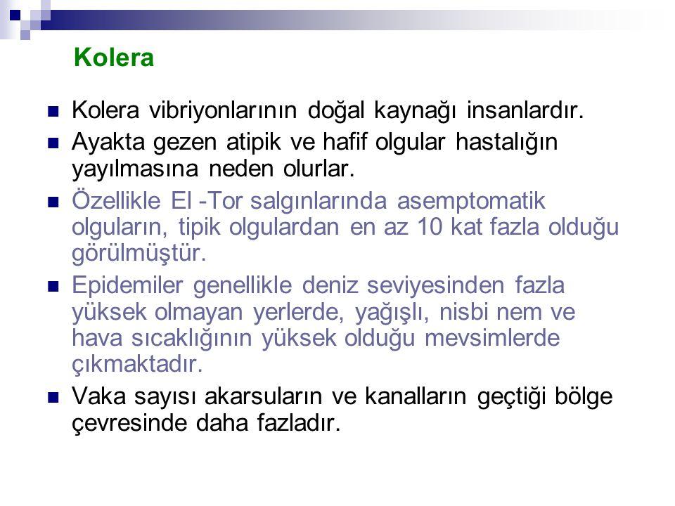 Kolera Kolera vibriyonlarının doğal kaynağı insanlardır.