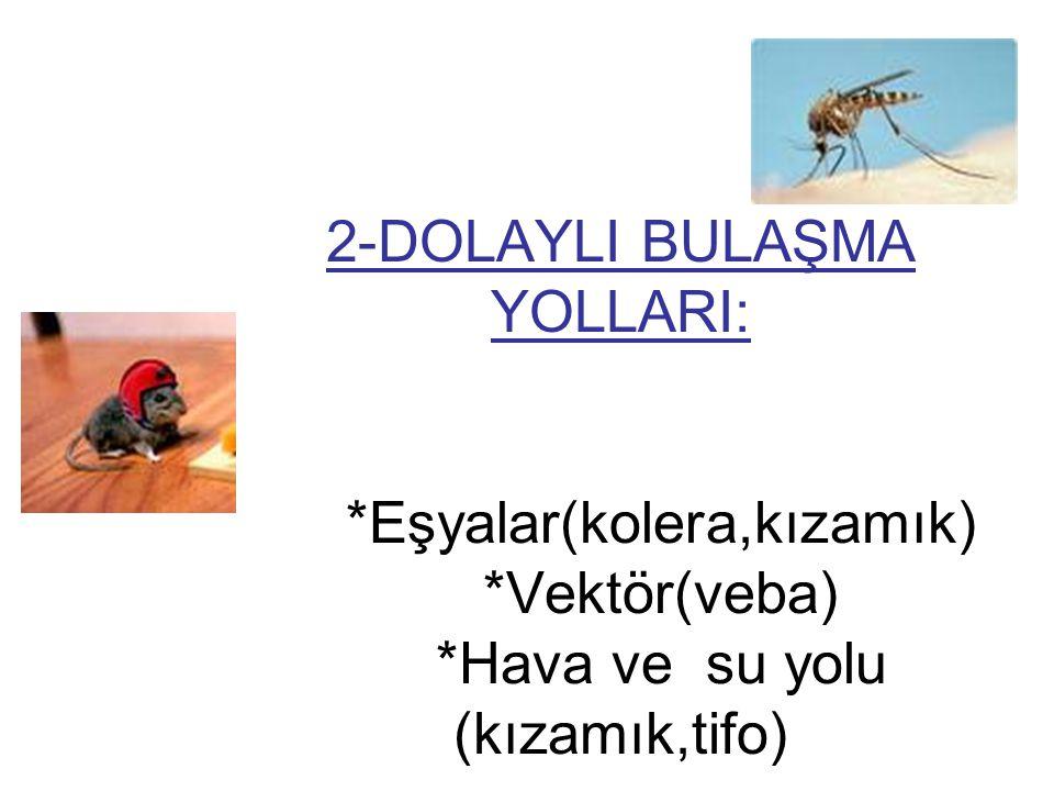 2-DOLAYLI BULAŞMA YOLLARI:. Eşyalar(kolera,kızamık). Vektör(veba)
