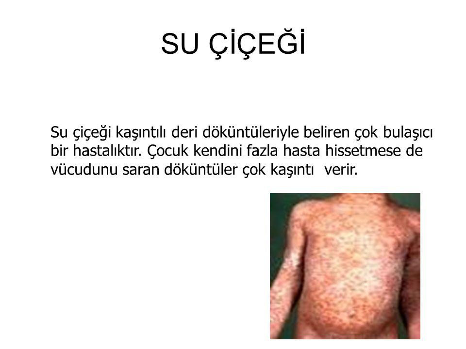 SU ÇİÇEĞİ