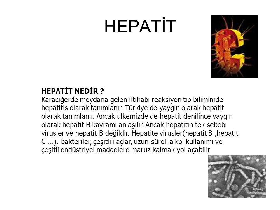 HEPATİT HEPATİT NEDİR