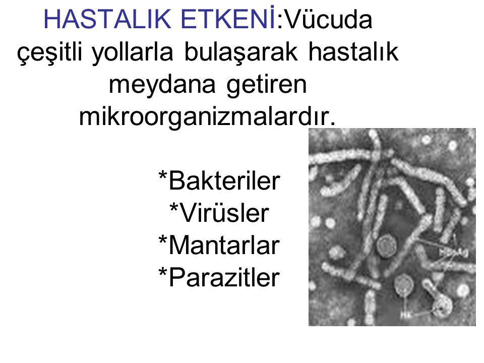HASTALIK ETKENİ:Vücuda çeşitli yollarla bulaşarak hastalık meydana getiren mikroorganizmalardır.