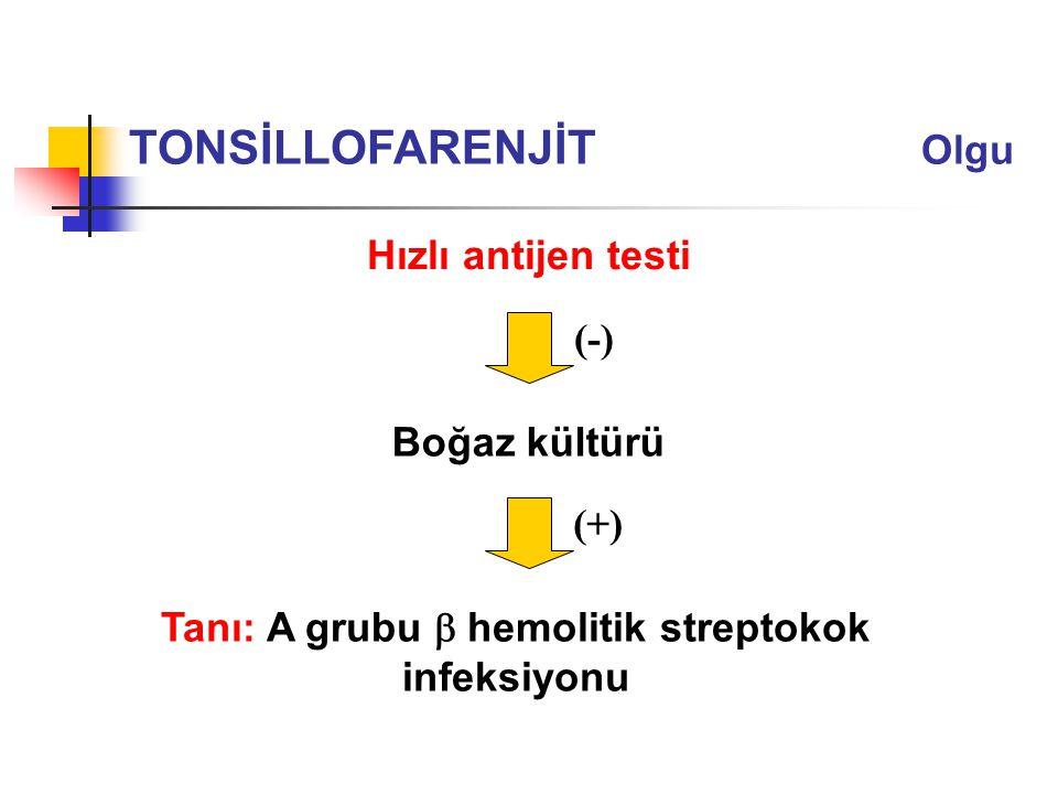 Tanı: A grubu  hemolitik streptokok infeksiyonu