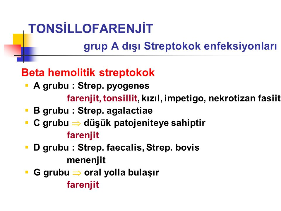 TONSİLLOFARENJİT grup A dışı Streptokok enfeksiyonları