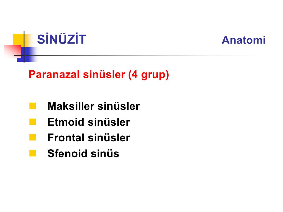 SİNÜZİT Anatomi Paranazal sinüsler (4 grup) Maksiller sinüsler
