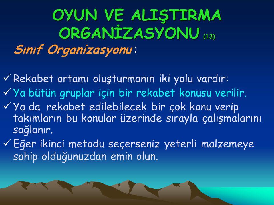 OYUN VE ALIŞTIRMA ORGANİZASYONU (13)