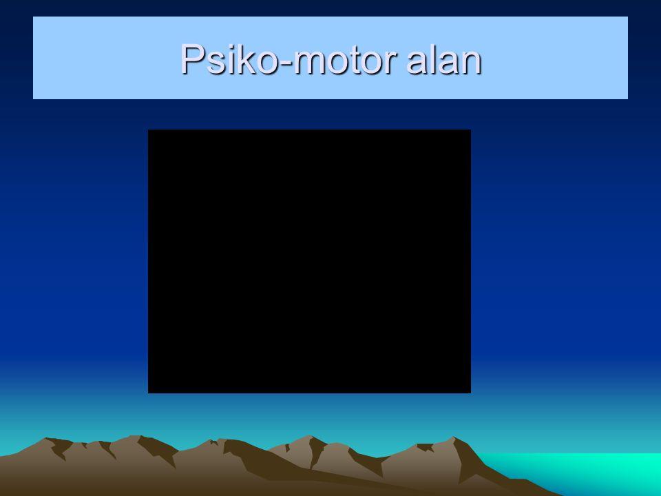 Psiko-motor alan