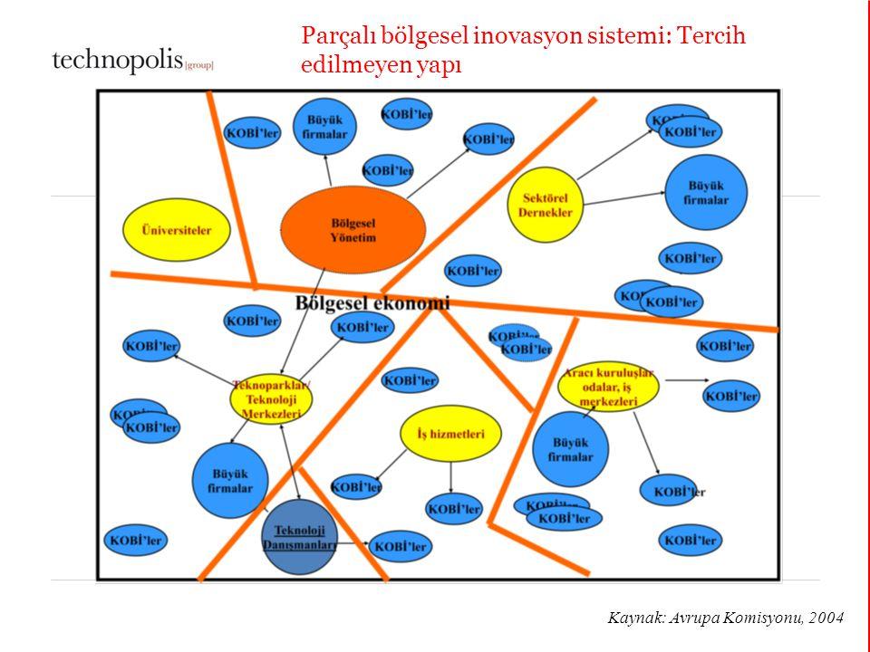 Parçalı bölgesel inovasyon sistemi: Tercih edilmeyen yapı
