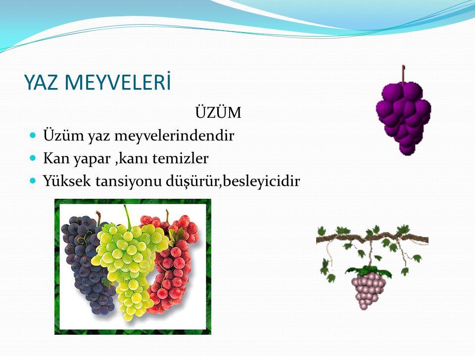 YAZ MEYVELERİ ÜZÜM Üzüm yaz meyvelerindendir Kan yapar ,kanı temizler