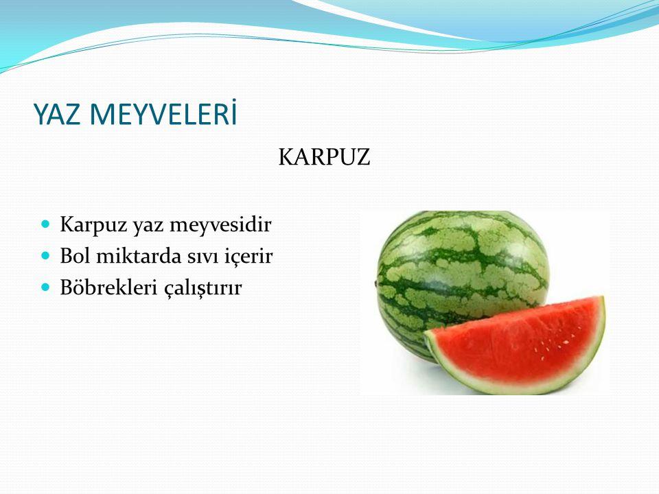 YAZ MEYVELERİ KARPUZ Karpuz yaz meyvesidir Bol miktarda sıvı içerir