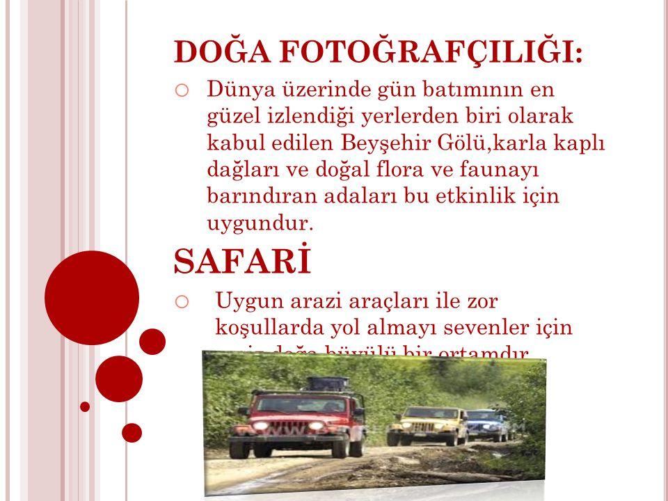 SAFARİ DOĞA FOTOĞRAFÇILIĞI:
