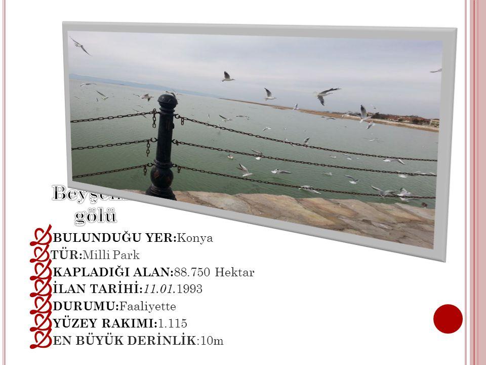 Beyşehir gölü BULUNDUĞU YER:Konya TÜR:Milli Park