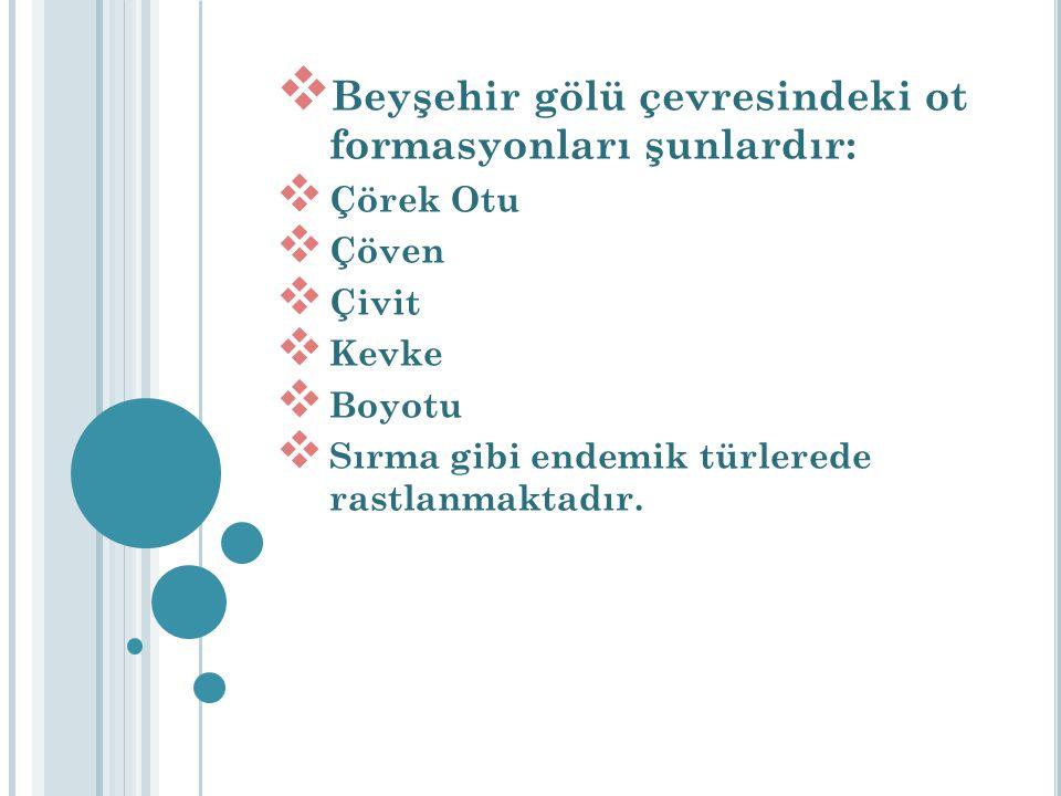 Beyşehir gölü çevresindeki ot formasyonları şunlardır: