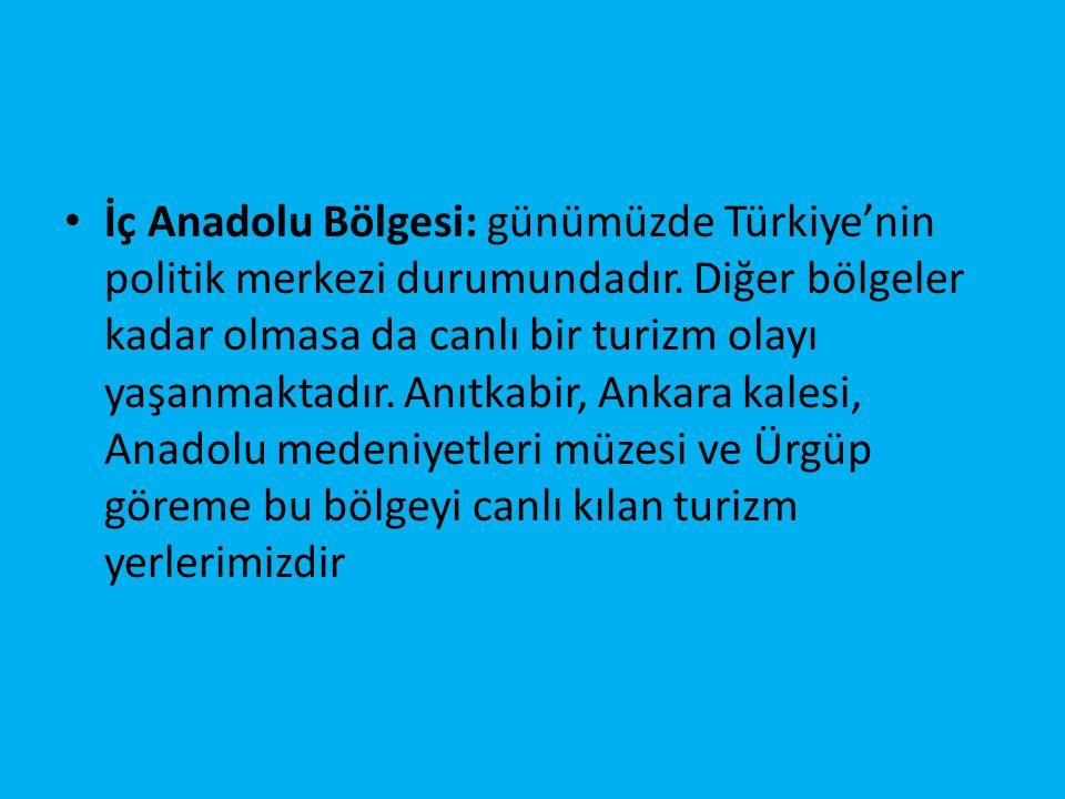 İç Anadolu Bölgesi: günümüzde Türkiye'nin politik merkezi durumundadır