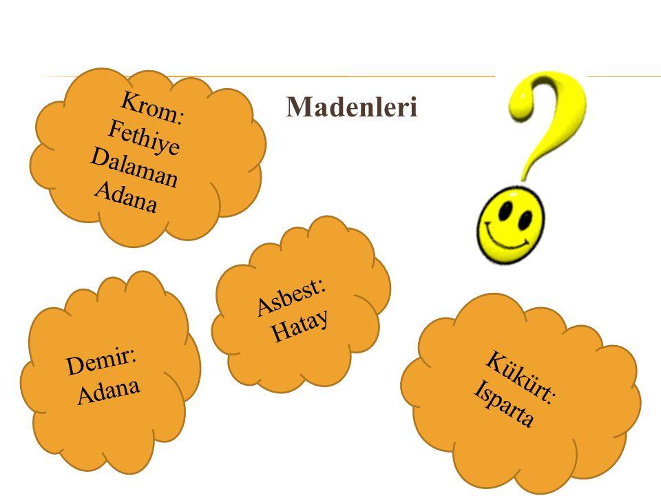 Krom: Fethiye Dalaman Adana