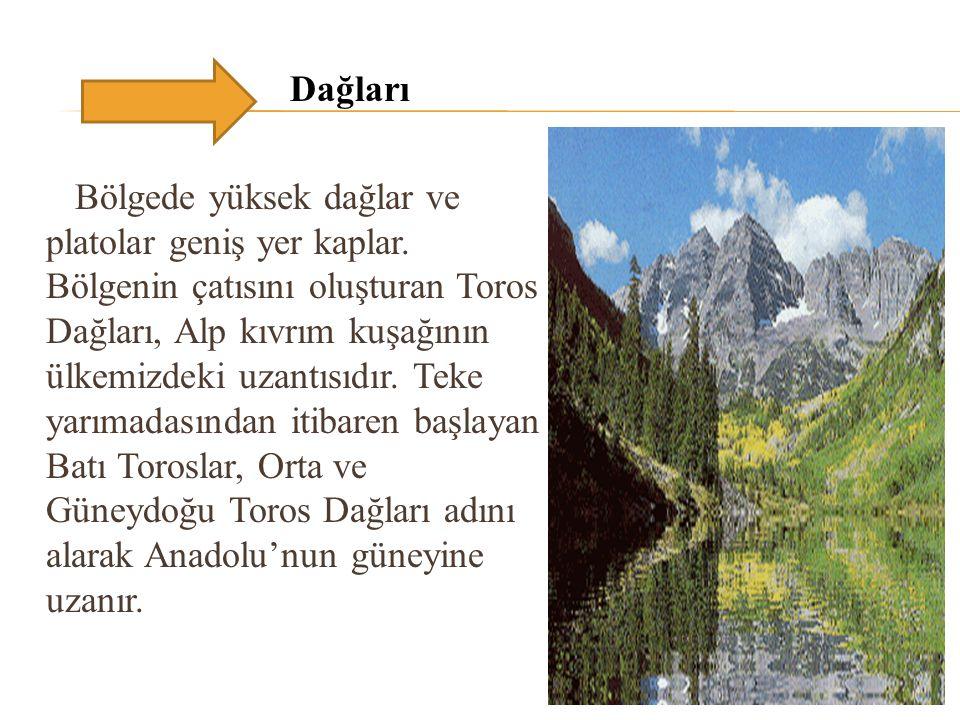 Dağları Bölgede yüksek dağlar ve platolar geniş yer kaplar