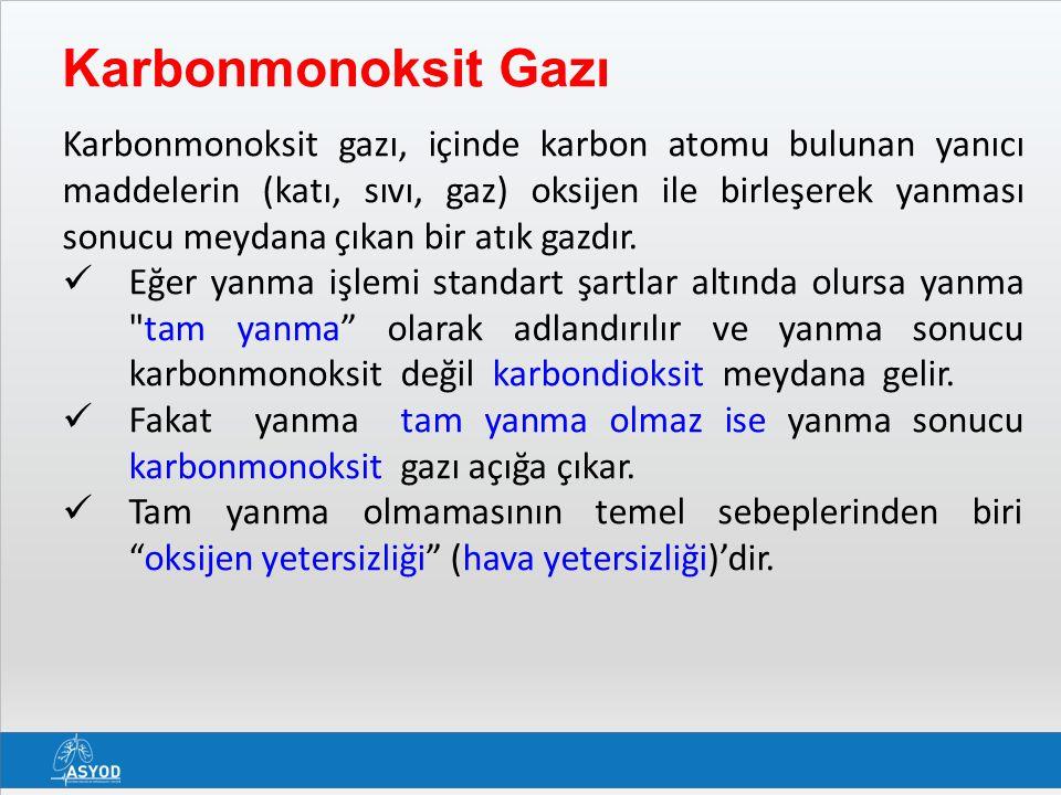 Karbonmonoksit Gazı
