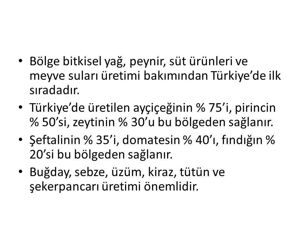 Bölge bitkisel yağ, peynir, süt ürünleri ve meyve suları üretimi bakımından Türkiye'de ilk sıradadır.