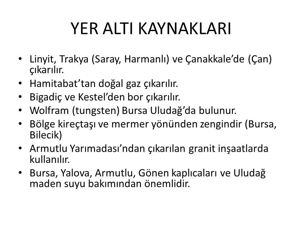 YER ALTI KAYNAKLARI Linyit, Trakya (Saray, Harmanlı) ve Çanakkale'de (Çan) çıkarılır. Hamitabat'tan doğal gaz çıkarılır.
