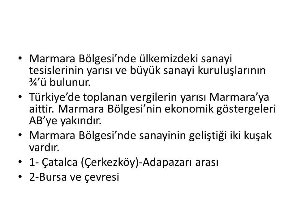 Marmara Bölgesi'nde ülkemizdeki sanayi tesislerinin yarısı ve büyük sanayi kuruluşlarının ¾'ü bulunur.