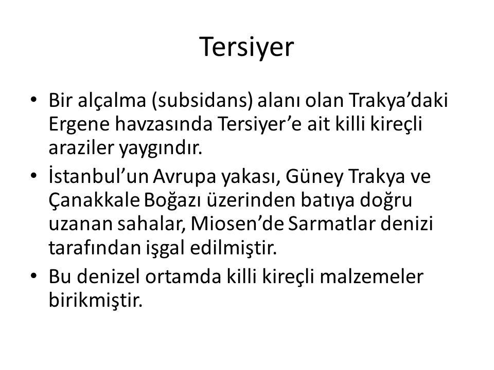 Tersiyer Bir alçalma (subsidans) alanı olan Trakya'daki Ergene havzasında Tersiyer'e ait killi kireçli araziler yaygındır.
