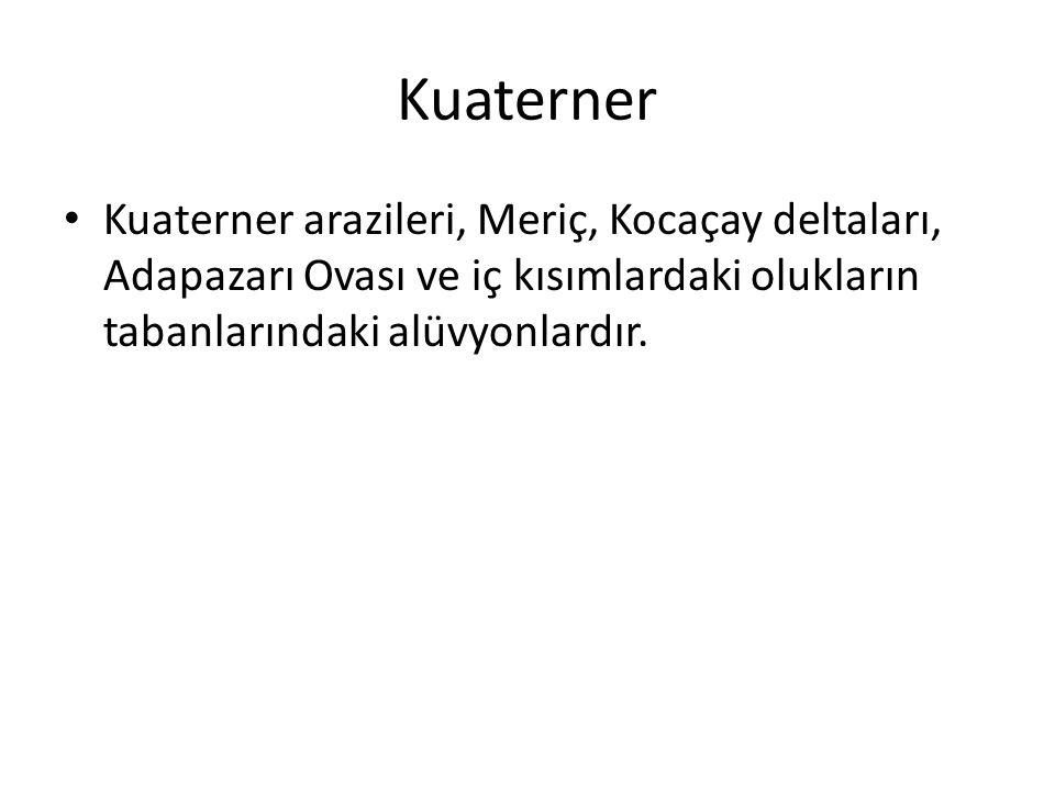 Kuaterner Kuaterner arazileri, Meriç, Kocaçay deltaları, Adapazarı Ovası ve iç kısımlardaki olukların tabanlarındaki alüvyonlardır.