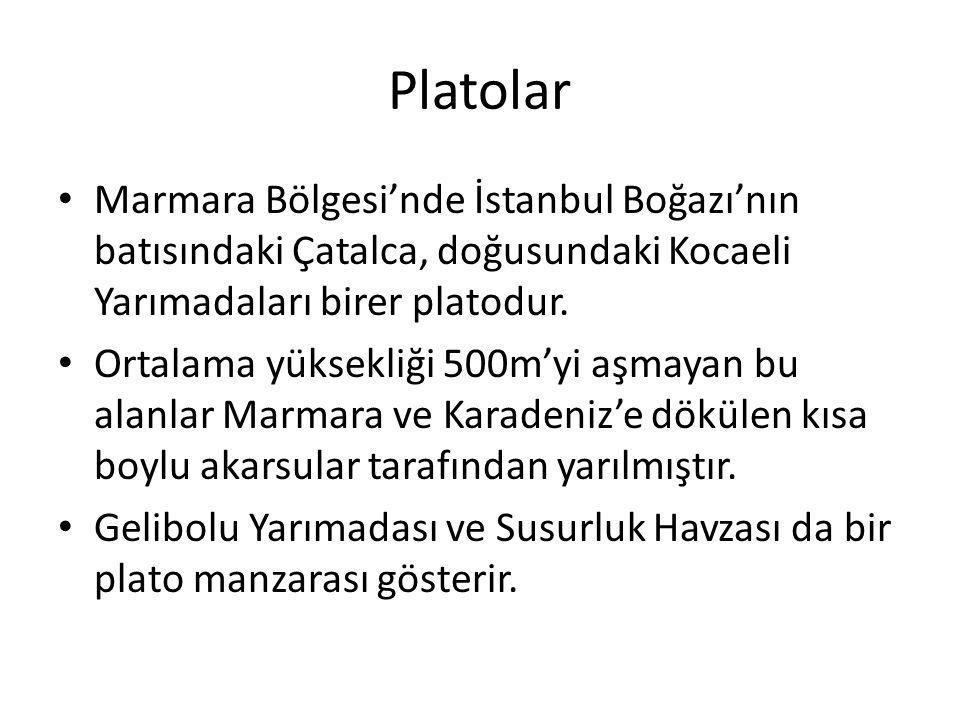 Platolar Marmara Bölgesi'nde İstanbul Boğazı'nın batısındaki Çatalca, doğusundaki Kocaeli Yarımadaları birer platodur.