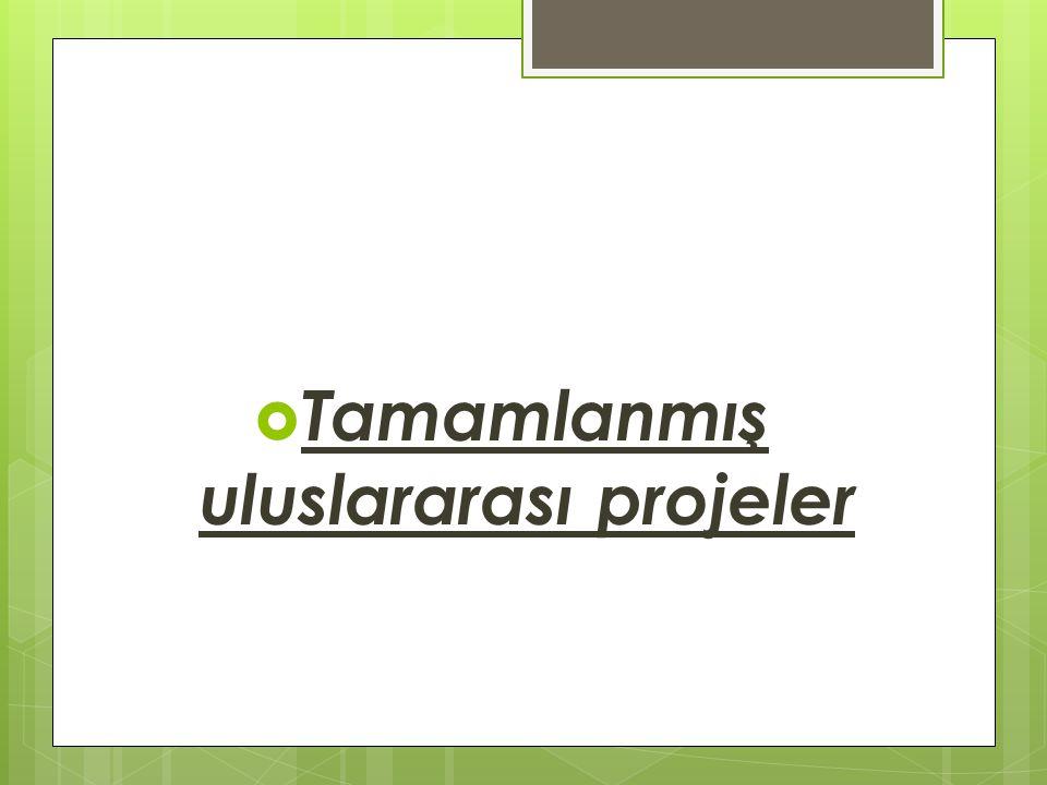 Tamamlanmış uluslararası projeler
