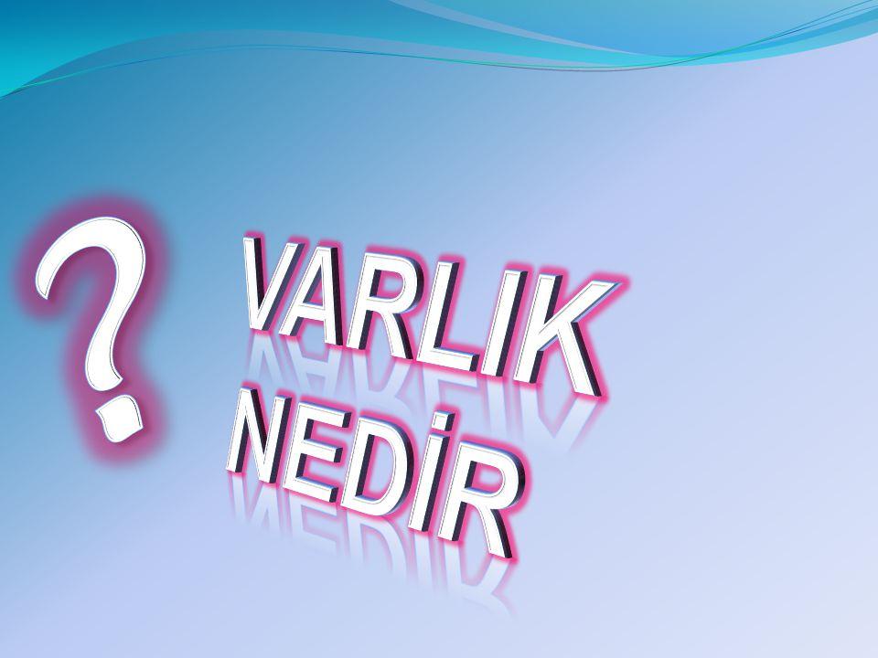 VARLIK NEDİR