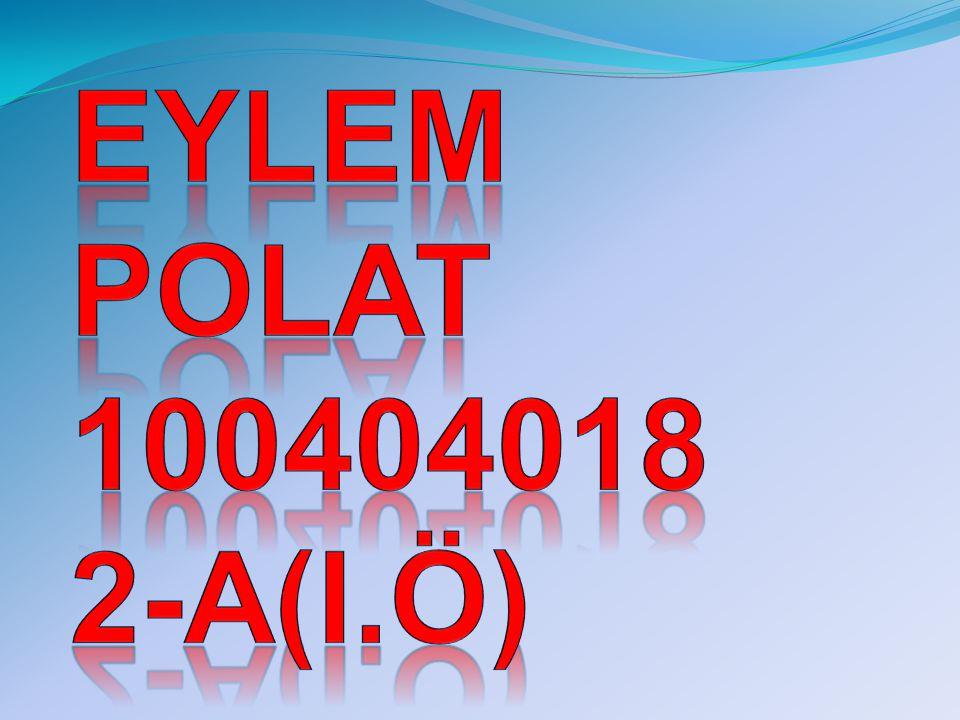Eylem polat 100404018 2-a(i.ö)