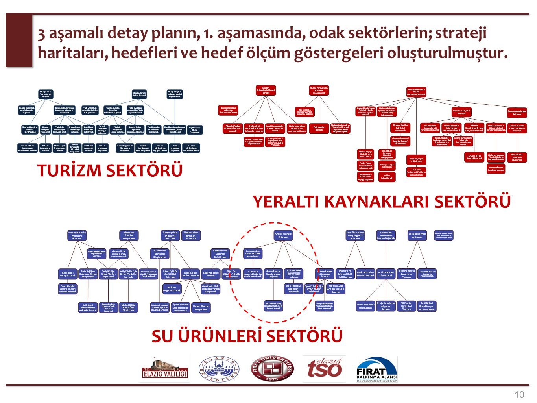 Strateji Haritası (Bir Bölüm): Su Ürünleri Sektörü.