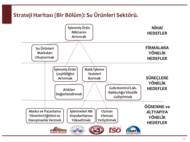 2. aşamada, ulaşılmak istenen rakamsal hedefler ve proje hedeflerinin belirlenmiştir (1/3). (Örnek: Su Ürünleri Sektörü)