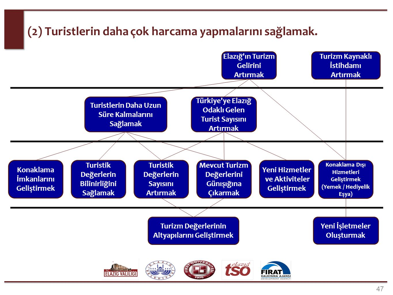 (3) Diğer. Türkiye de Önde Gelen Fikir Liderleri ile İlişkiler Kurmak