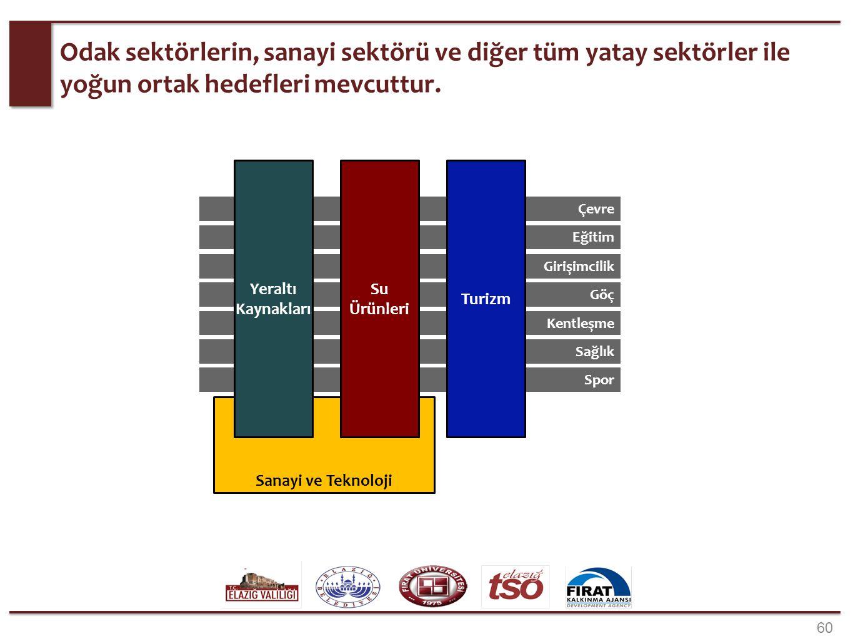 Yeraltı Kaynakları Sektörü, Sanayi Sektörü ortak alanları.