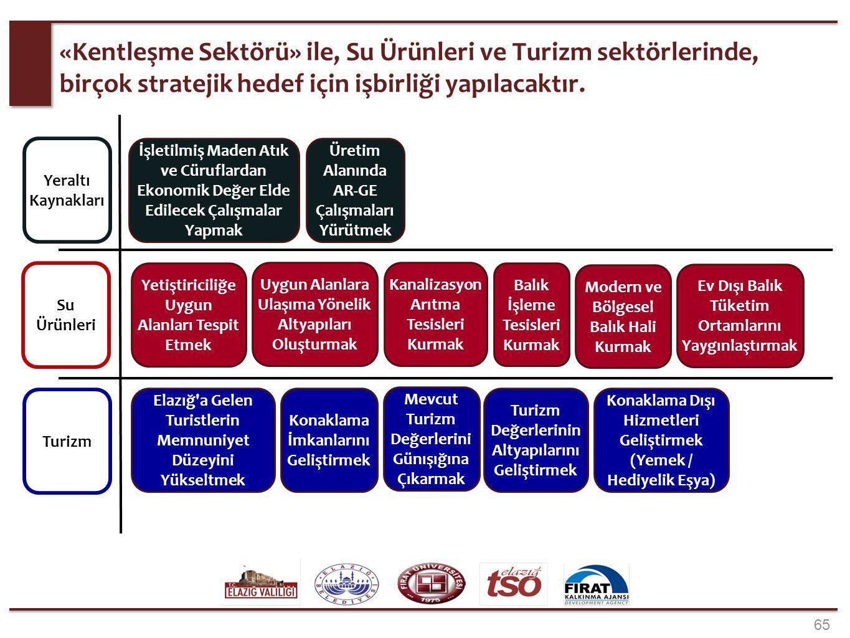 «Eğitim Sektörü» insan kaynağının gelişimi anlamında tüm sektörler ile ilişkilidir.