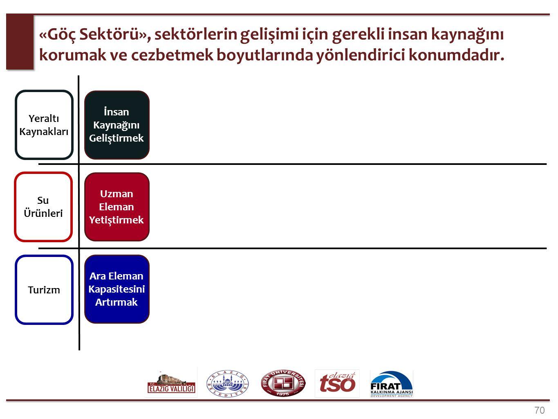 Yatay sektörlerin, odak sektörlerden bağımsız şekilde, ilin gelişimine yönelik önerileri.