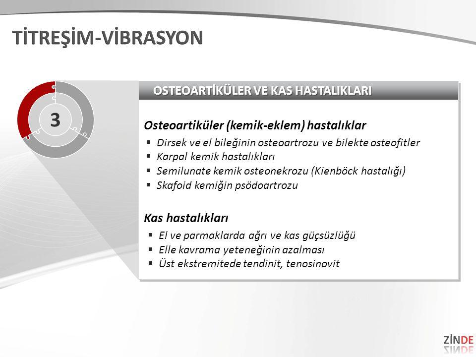 TİTREŞİM-VİBRASYON 3 OSTEOARTİKÜLER VE KAS HASTALIKLARI