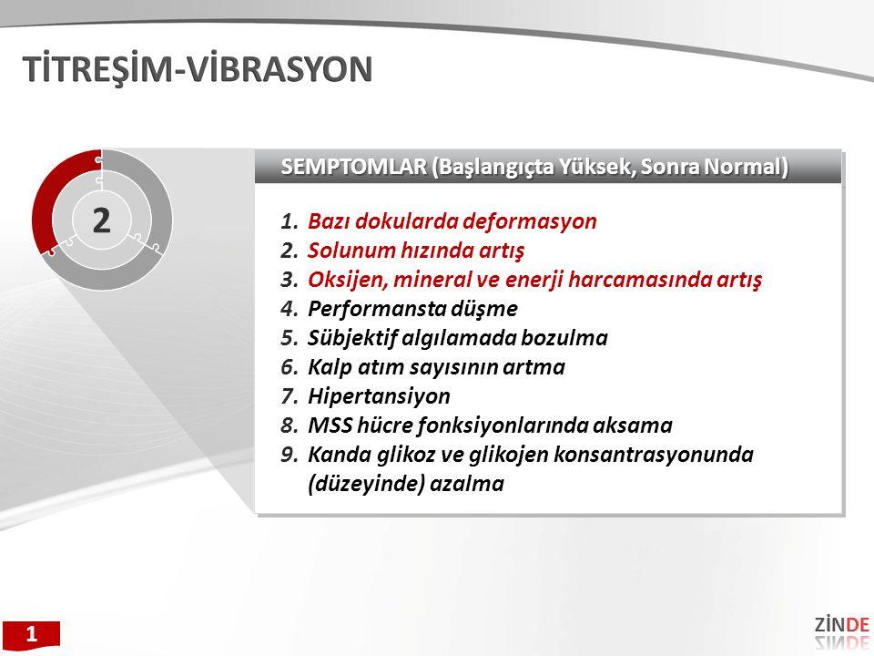 TİTREŞİM-VİBRASYON 2 SEMPTOMLAR (Başlangıçta Yüksek, Sonra Normal)